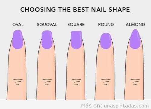 Dibujo con las diferentes formas de cortar las uñas
