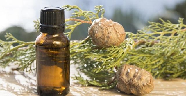 Aceite esencial para uñas y cutículas de ciprés