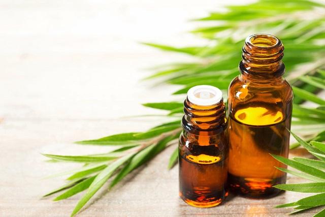 Aceite esencial para uñas y cutículas de árbol de té